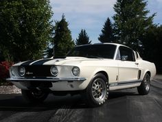 Фото Shelby Mustang GT500