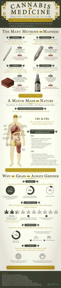 WHAT CANNABIS DOES TO YOUR MIND & BODY DEPENDING ON HOW YOU INGEST IT (INFOGRAPHIC) - Imgur