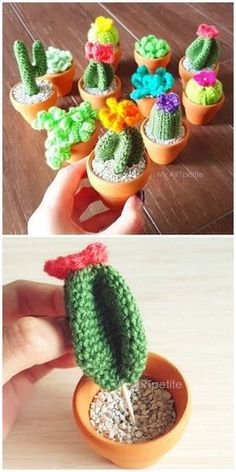 Crochet Diy Crochet Cactus Patterns Best Ideas Video Instructions - You will love this collection of Crochet Cactus Patterns and we have all the most popular ideas with lots of free patterns and video tutorial included. Crochet Cactus Free Pattern, Crochet Diy, Crochet Flower Patterns, Crochet Gifts, Knitting Patterns Free, Amigurumi Patterns, Crochet Ideas, Diy Crochet Cactus, Crochet Edgings