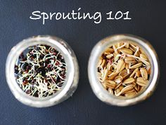 SAS does ...: Sprouting 101