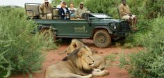Safaris in Madikwe http://www.safari.co.za/Getaway_Breaks_Packages-travel/pilanesberg-madikwe-combo.html