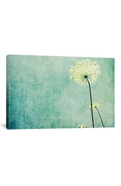 iCanvas 'Efflorescence' Giclee Print Canvas Art