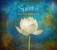 """REVIEWS ~ David Wahler – SPIRITUS: '...'Chela'… I haven't heard a prettier tune (yet) in 2015. I give David a MOST HIGHLY RECOMMENDED, with an """"EQ"""" (energy quotient) rating of 4.99. Get more information about David and his works at his website. -Rotcod Zzaj, Zzaj Productions  http://rotcodzzaj.com/…/improvijazzation…/issue-151-reviews/"""