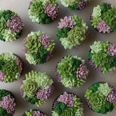 16 Cakes That Will Deeply Satisfy Anyone Obsessed With Succulents is part of Succulent garden Cake - For the most epic garden party ever Wilton Cakes, Fondant Cakes, Wilton Cake Decorating, 16 Cake, Cupcake Cakes, Kid Cakes, Pretty Cakes, Cute Cakes, Royal Icing