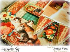 Layout Inspiration with Raining Cats & Dogs - Graphic 45®
