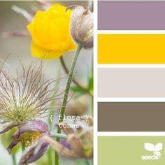Design Seeds {flora color} | Book Preview