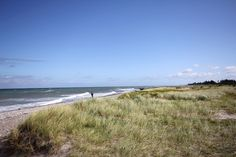 Beach near Altenteil, north coast of Fehmarn, Baltic Sea