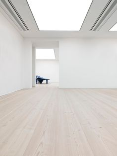 Dinesen at Saatchi Gallery
