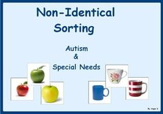 Sorting non-identical items is perfect for children who have mastered basic matching and are ready to work on more complex skills. This activity teaches organization and is an essential foundational skill that improves categorizing and discrimination.