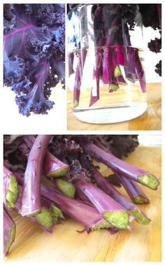 #purple, #kale, #food, #vegetables