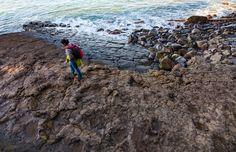 Un viaje con los niños por la costa de los dinosaurios Costa, All About Earth, Santa Marina, Asturias Spain, Peru Travel, Earth Science, Fossils, Geology, Trekking
