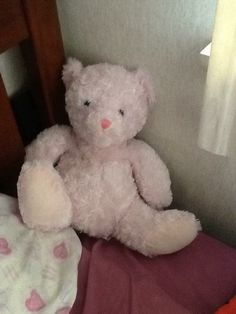 My teddy haha got it for my sixteenth birthday ..I may not like the color pink but I love teddies