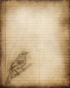 This is my original lined paper stationery that has been digitally enhanced with a pencil bird drawing and soft sepia background.  Perfect for creating