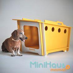 casinha de cachorro desmontável e ecológica minihaus pequena