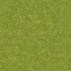 Short, flattened green grass with thick blades. Texture is consistent throughout. 131 textures in this category. Texture Sol, Grass Texture Seamless, Plant Texture, Green Texture, Texture Mapping, Tiles Texture, Seamless Textures, Natural Texture, Grass Photoshop