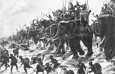 It's known that early man used animals in ancient warfare. Horses, elephants…