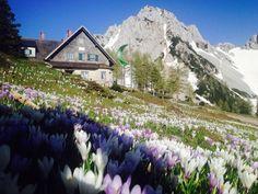Alpine und hundefreundliche Klagenfurter Hütte inmitten der Karawanken, Gemeinde Feistritz im Rosental auf 1.644 Metern. Übernachtungen mit Hund erlaubt!