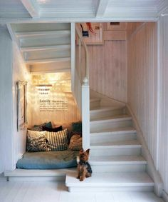 Under Stairs Nook, Dog Bedroom, Dog Rooms, Stair Storage, House Stairs, Staircase Design, Staircase Landing, Bedroom Styles, Modern Room