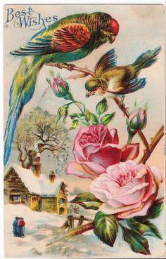 Uccelli e Rose di maimiesmerchantile su Etsy