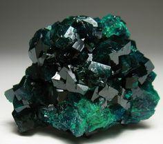 My favorite minerals: Azurite~Chalcopyrite~Dioptase~Opal~Rhodochrosite~ Tourmaline