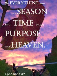 Napa sunrise Chalkboard Bible Verses, Ephesians 3, Sunrise, Heaven, Words, Movie Posters, Movies, Sky, Films
