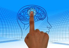 Nootropics are also known as memory enhancer. Nootropics are basically some natural drugs that have the ability to enhance the working of your cognitive functions. Many of the nootropics have the ability to boost up your memory. Education Positive, Reward System, Traumatic Brain Injury, Subconscious Mind, Brain Health, Healthy Brain, Happy Healthy, Healthy Foods, Healthy Life