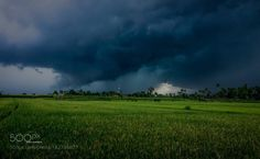 on the way ubud bali . in rainy season by rudysamosir  trees sky travel clouds rain bali indonesia fields cloud storm on the way ubud bali . in rainy seas