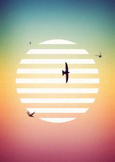 Fabrice Vrigny for Musk decoration : http://www.fabricevrigny.com/ #minimal #poster #birds #morocco