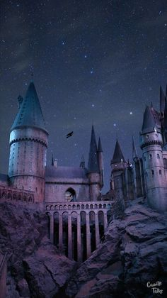 Le Studio Harry Potter à Londres Wallpaper Harry Potter for phone :) // Cl. Harry Potter Tumblr, Photo Harry Potter, Studio Harry Potter, Images Harry Potter, Art Harry Potter, Mundo Harry Potter, Harry Potter Studios, Harry Potter Aesthetic, Harry Potter Facts