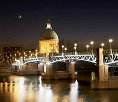 Toulouse illuminated at night with a bridge reflecting in the river
