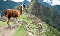 Groupon - 10-Day Tour of Peru with Round-Trip Airfare from Gate 1 Travel in Lima, Machu Picchu, and Sacred Valley. Groupon deal price: $1,699.00