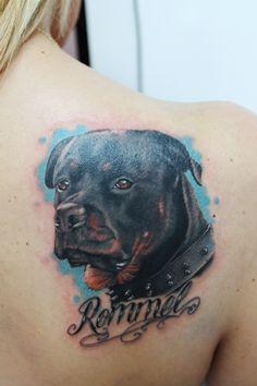 Rottweiler tattoo realistic style, Afiordipelle Tattoo, Arezzo, Toscana,Italy