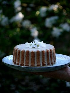 Limetkový bezlepkový koláč s Matcha čajom - My Sweet Fairytale Matcha, Latte, Food Photography, Cheesecake, Gluten Free, Chocolate, Spring, Fairytale, Sweet