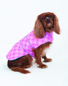 Fashion Pet Lookin Good Heart Puffy Blanket Coat for Dogs bcfe2af26