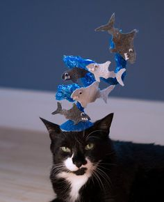 The Sharknado Cat Hat by NotsoKittyShop on Etsy, $20.00