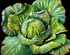 Garden Flowers Susannah Blaxill - Botanical Artist - Cabbage On Black Background Juan Sanchez Cotan, Veggie Art, Watercolor Fruit, Watercolour Flowers, Still Life Fruit, Poster Art, Fruit Painting, Wow Art, Botanical Prints