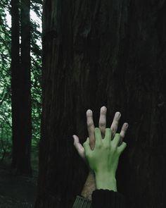 Sansa Stark x Sandor Clegane Story Inspiration, Character Inspiration, Yennefer Of Vengerberg, Polaroid, Dragon Age, Werewolf, Teen Wolf, Hands, World