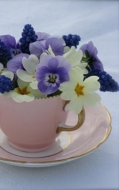 teacup floral arrangement primroses, grape hyacinths and pansies Fresh Flowers, Spring Flowers, Beautiful Flowers, White Flowers, Arte Floral, Pansies, Daffodils, Floral Arrangements, Flower Arrangement