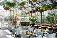 11 Things to Do in Koreatown, Los Angeles: The Neighborhood Guide - Condé Nast Traveler Greenhouse Attached To House, Greenhouse Shelves, Greenhouse Interiors, Small Greenhouse, Greenhouse Plans, Greenhouse Gardening, Greenhouse Restaurant, Greenhouse Cafe, Restaurant Restaurant