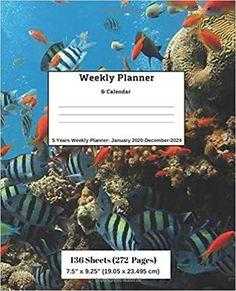 Amazon.com: Weekly Planner & Calendar: 5 Years Planner: January 2020-December-2024 (9781696573535): Ricky Lee: Books