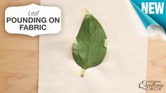 Watch and learn how to pound leaves onto light colored fabric and try this technique in your next project. >>> www.nationalquilterscircle.com/video/leaf-pounding-on-fabric #NQC #learnmorequiltmore