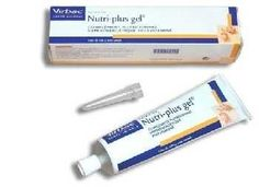 Virbac Nutri-plus Gel Essential Vitamins Minerals and Trace Element for Dogandcat *** See this great product. (This is an affiliate link and I receive a commission for the sales) Cat Vitamins, Indestructable Dog Bed, Cheap Pets, Large Dog Crate, Wireless Dog Fence, Cat Nutrition, Best Probiotic, Pet Supplements, Dogs For Sale