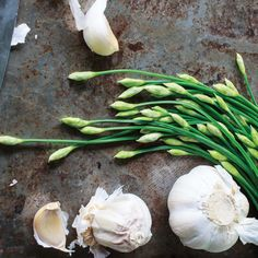 The Medicinal Value of Garlic - Food and Recipes - Mother Earth Living