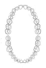 Image result for dental chart