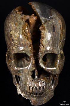 The split down the skull is awesome ! Skull Decor, Skull Art, Horror Decor, Crystal Skull, Skull Jewelry, Rocks And Gems, Skull And Bones, Rocks And Minerals, Stone Art