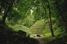 Montes Azules, Chiapas. Mexico  www.absolut-Montes Azules  mexico.com/montes-azules-un-paraiso-donde-convergen-arqueologia-y-naturaleza/