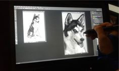 Another overview of my digital painting process of Fluffy, my sister's pet Husky. Check out my other Siberian Husky digital painting process here: https://vimeo.com/jocelynsy/vimeocomjocelynsyboomer  Credits: Music clip title:Shadowing Prt2 From: Sound Snap  My Website: jocelynsy.wixsite.com/jocelynsy IMdB: imdb.com/name/nm0842922/#!  Follow me : Facebook: facebook.com/jocelynsydraws Instagram: instagram.com/jocelynsydraws/ Twitter: twitter.com/joscat08 Blogger: rabbitpixiedust....