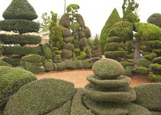 Pearl Fryar's topiary garden. A Man Named Pearl is an inspiring documentary about this artist.