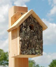 Bird House Kits Make Great Bird Houses Bird House Plans, Bird House Kits, Bird House Feeder, Bird Feeders, Wren House, Black Capped Chickadee, Bird Aviary, Bird Houses Diy, Bird Boxes