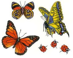 Butterfly tattoo ideas....may add ladybugs to my rose too.
